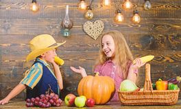 Held responsible for daily farm chores. Kids farmers girl boy vegetables harvest. Family farm. Children presenting farm. Harvest wooden background. Reasons why royalty free stock image