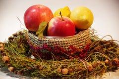 Helder beeld van greens, citroen, tomaten, komkommers, salade royalty-vrije stock afbeeldingen