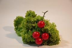 Helder beeld van greens, citroen, tomaten, komkommers, salade royalty-vrije stock foto