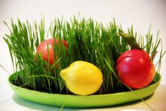 Helder beeld van greens, citroen, tomaten, komkommers, salade stock foto