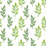 Helder bloemen naadloos ontwerp met groene installaties Royalty-vrije Stock Afbeeldingen