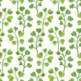 Helder bloemen naadloos ontwerp met groene installaties Royalty-vrije Stock Afbeelding