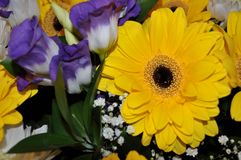 helder boeket van rozen en chrysanten Royalty-vrije Stock Fotografie