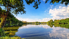 Helder de herfstlandschap in het stadspark Stock Fotografie