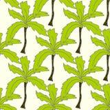 Helder de zomer naadloos patroon met palmen Royalty-vrije Stock Afbeeldingen