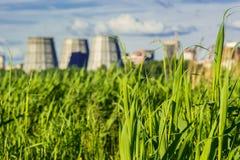 Helder en hoog groen gras tegen de achtergrond van fabriekskoelers Royalty-vrije Stock Afbeelding