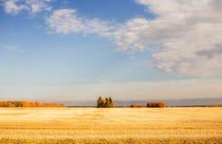 Helder en kleurrijk landbouwplattelandslandschap Stock Foto's