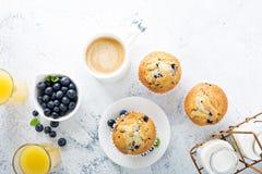 Helder en luchtig ontbijt met bosbessenmuffin stock foto
