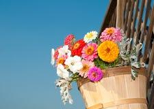 Helder gekleurde bloemen in een houten emmer agains Royalty-vrije Stock Foto