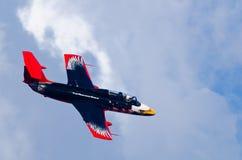 Helder gekleurde Delfin-vlieg voorbij Royalty-vrije Stock Afbeelding