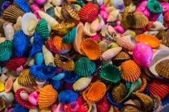 Helder geschilderde overzeese shells stock foto's