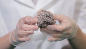 Helder grijs robijnrood kristalerts in handen met handschoenen De kristallisatie is het natuurlijke of kunstmatige proces waardoo stock fotografie