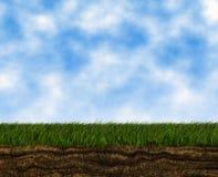 Helder het groeien groen gras op een blauwe hemelachtergronden Royalty-vrije Stock Afbeelding