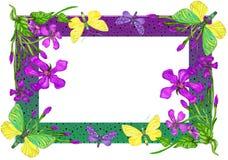 Helder kader met vlinders en exotische bloemen stock illustratie