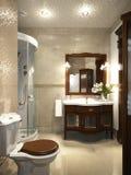 Helder klassiek traditioneel van de wasserijruimte en badkamers binnenland Stock Afbeelding
