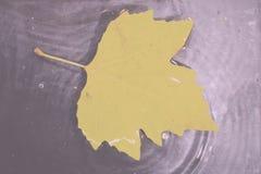 Helder kleurrijk de herfstblad die in water Uitstekende Retro Fil drijven royalty-vrije stock afbeeldingen