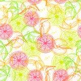 Helder, kleurrijk en ongebruikelijk fruitpatroon Royalty-vrije Stock Fotografie