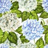 Helder kleurrijk naadloos patroon met bloemen en bladeren van hudrangea vector illustratie