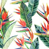 Helder mooi groen bloemen kruiden tropisch mooi leuk veelkleurig de zomerpatroon van Hawaï van tropische gele bloemen op een lapj stock illustratie