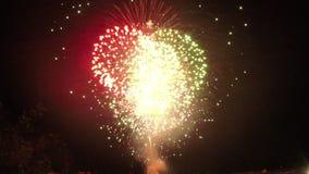 Helder mooi vuurwerk stock footage