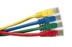 Helder multi gekleurde ethernet netwerkkabels Stock Afbeelding