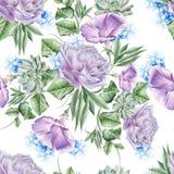 Helder naadloos patroon met bloemen Nam toe petunia Hyacint succulent De illustratie van de waterverf royalty-vrije stock foto's