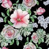 Helder naadloos patroon met bloemen Nam toe succulents malve De illustratie van de waterverf Royalty-vrije Stock Foto
