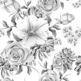 Helder naadloos patroon met bloemen Nam toe succulents malve De illustratie van de waterverf Stock Fotografie