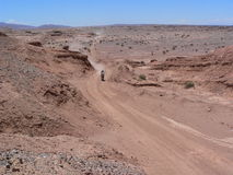 Helder Rodriguez. DAKAR 2011 - Stage 12 Royalty Free Stock Images