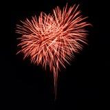 Helder rood vuurwerk in de vorm van hart Stock Afbeeldingen