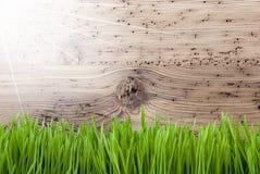 Helder Sunny Wooden Background, Gras, Exemplaarruimte Stock Foto's