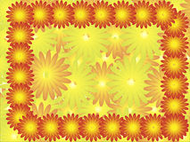 Helder varicoloured flowerses. Royalty-vrije Stock Fotografie
