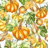 Helder waterverf naadloos patroon met pompoengroenten en bloemen vector illustratie
