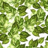 Helder waterverf naadloos patroon met sappige groene bladeren royalty-vrije illustratie