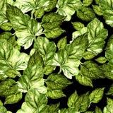 Helder waterverf naadloos patroon met sappige groene bladeren vector illustratie