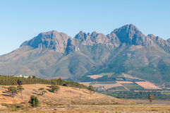 The Helderberg (clear mountain) near Somerset West, South Africa. The Helderberg (clear mountain) with vineyards on its slopes near Somerset West in the Western Royalty Free Stock Photography