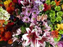 Heldere aantrekkelijke verscheidenheid van kleurrijke bloemboeketten op vertoning stock foto