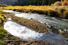 Heldere Bergstroom met Dalingskleuren in Idaho Stock Foto's