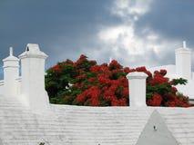 Heldere Bermudaanse kleuren Royalty-vrije Stock Foto's