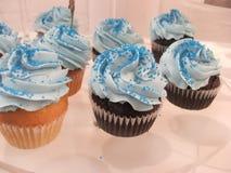 Heldere Blauwe Cupcakes stock afbeelding