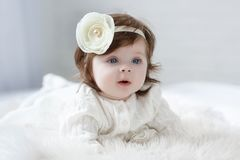 Heldere blauwe eyed beauity meisje van de 6 maand het oude baby bekijkt dicht de camera Royalty-vrije Stock Afbeeldingen
