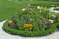 Heldere bloemen op het bloembed Royalty-vrije Stock Afbeeldingen