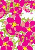 Heldere bloemenachtergrond Stock Foto's