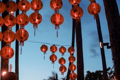 Heldere Chinese lantaarns op palmen tegen de avondhemel stock fotografie
