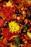 Heldere de herfstachtergrond Stock Foto's