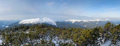 Heldere de winterdag in de bergen royalty-vrije stock foto's