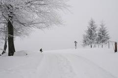Heldere de winterdag in de bergen stock afbeelding
