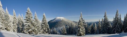 Heldere de winterdag in de bergen stock fotografie