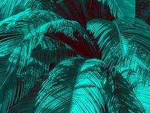 Heldere de zomerachtergrond, in duotone en halftone effect stock fotografie