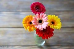 Heldere de zomerbloemen Stock Afbeelding